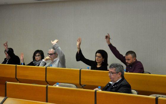 141218 PSOE El Ejido Pleno extraordinario WEB