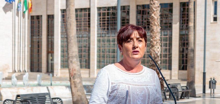 El Grupo Municipal Socialista en El Ejido exige al alcalde del PP que se preocupe y presione al Gobierno de Moreno Bonilla para adoptar medidas que frenen nuevos contagios por la COVID-19