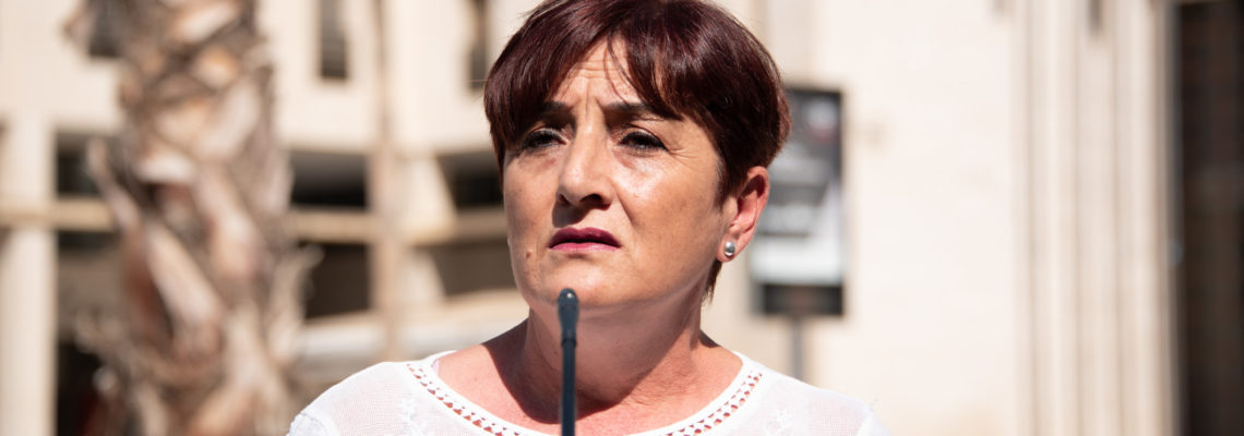 El PSOE de El Ejido exige a la Junta de Andalucía un refuerzo sanitario en el Poniente para hacer frente a los rebrotes de Covid-19