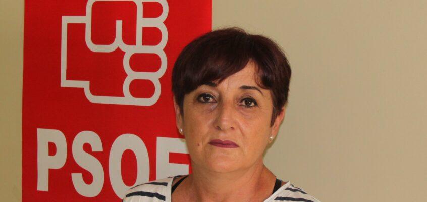 """El PSOE de El Ejido se alegra de que el alcalde del PP al fin vaya a aplicar la ordenanza de prevención de actos incívicos que lleva """"más de una década guardada en un cajón"""""""