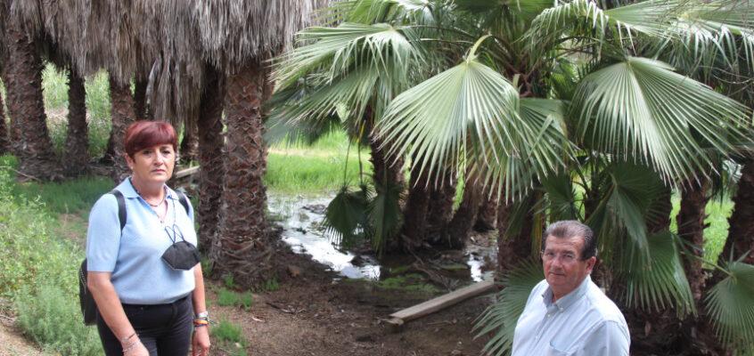 El PSOE de El Ejido propone al Gobierno local que estudie la opción de crear un Aula de Naturaleza en el Parque Forestal de Matagorda con los fondos europeos de recuperación